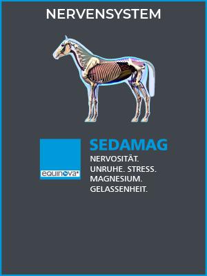 detailbild-produkt-kategorie-sedamag