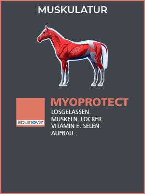 deatailbild-produkt-kategorie-myoprotect