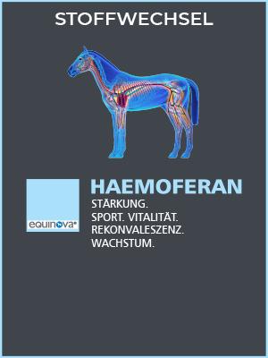 detailbild-produkt-kategorie-haemoferan